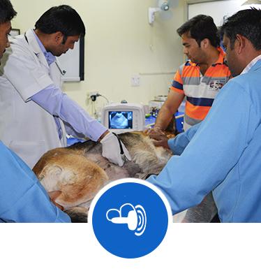 pet clinic in delhi